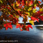 fall_leaves_desktop_img_oct2013