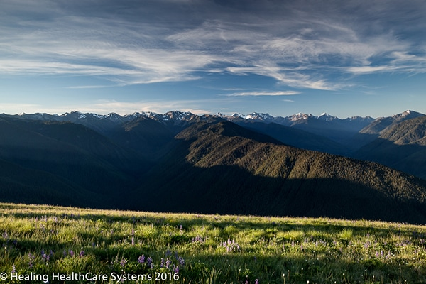 olympic_blog_hurricane_ridge
