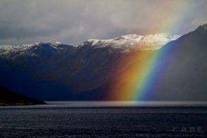 Rainbownew