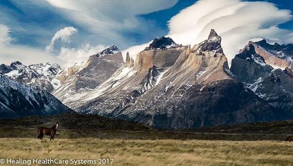 Torres del Paine_RL_2017-03-04_0354_C0000_000078