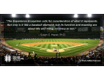Susan Mazer blog quote baseball
