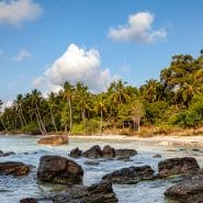 Rocks in ocean palm trees Vietnam