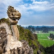 Vietnam dragon statue